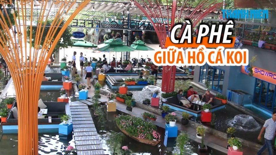 Top 5 quán Cafe cá Koi TPHCM hút khách nhất