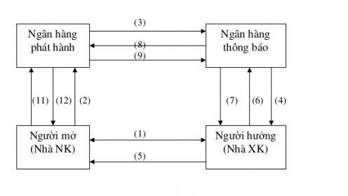 Quy trình làm việc theo phương thức thanh toán LC